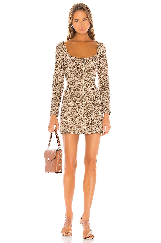 Miaou Dree Dress in Tan Zebra