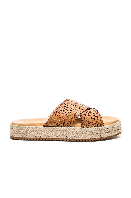 Matisse Ponte Sandal in Tan