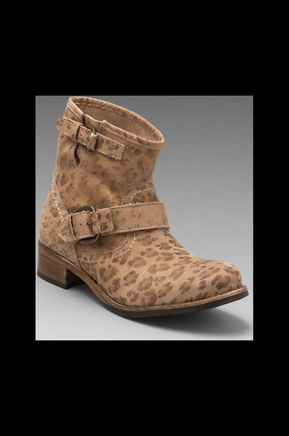 Matisse Richards Short Motorcycle Boot in Beige Leopard