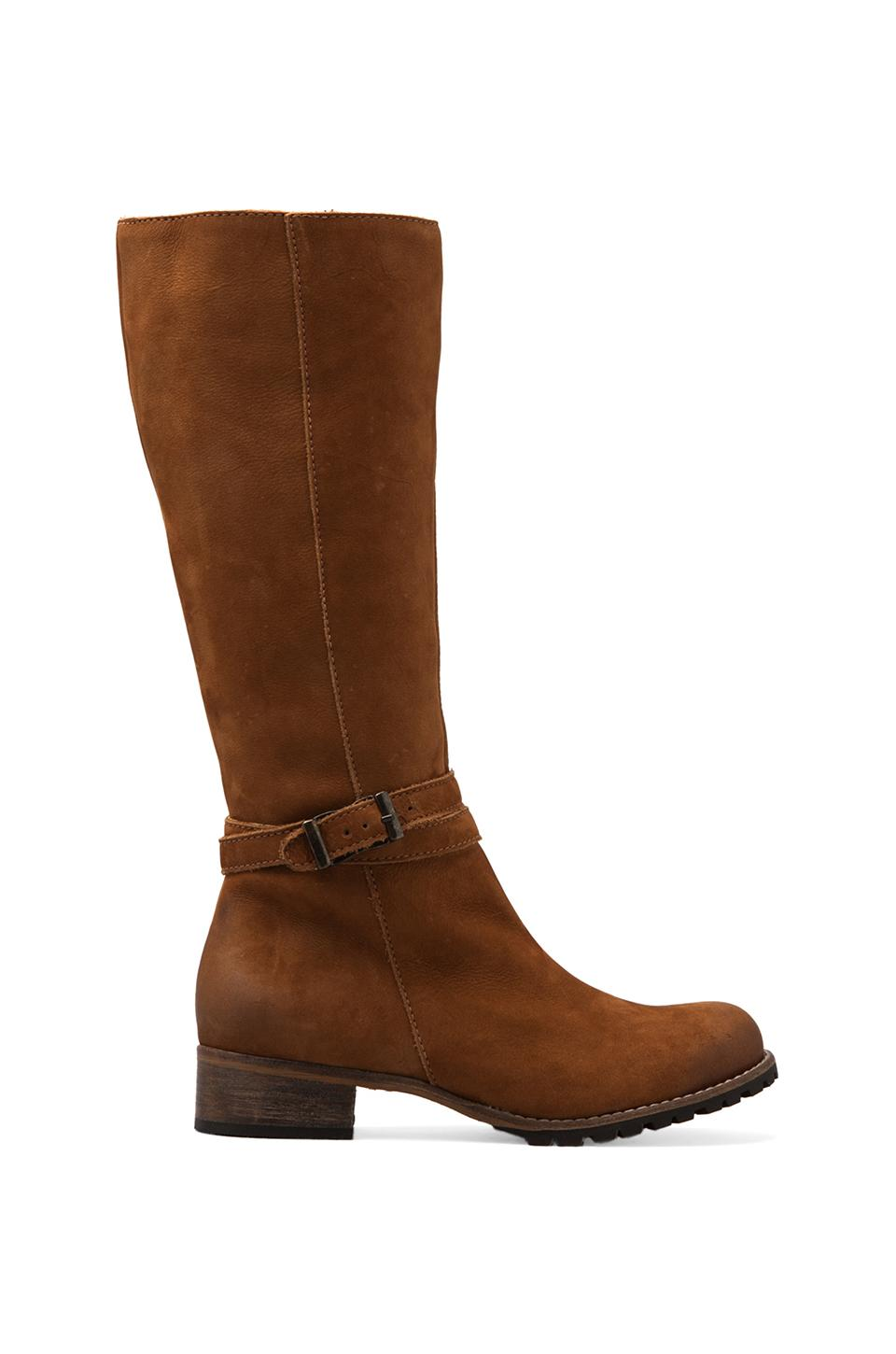 Matisse Younger Boot in Tan