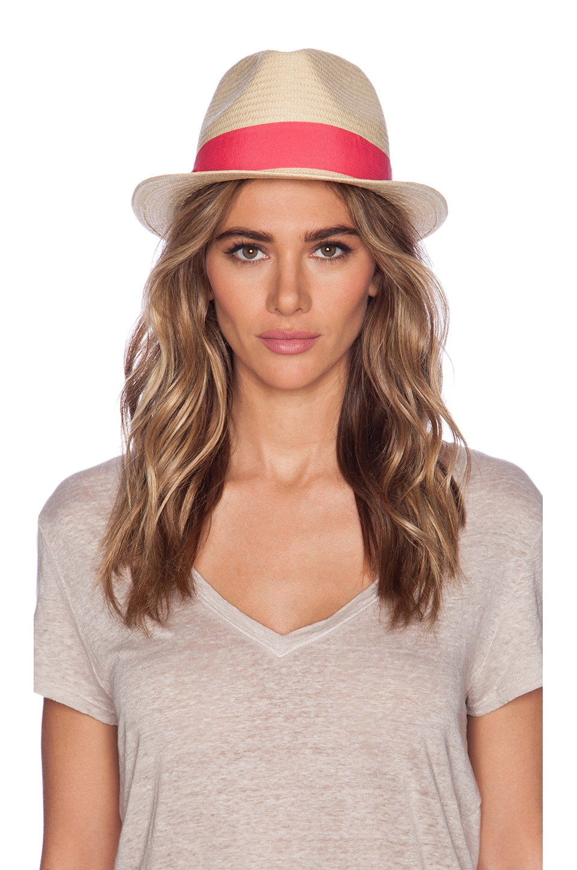 Michael Stars Pop Band Short Brim Panama Hat in Passion Fruit