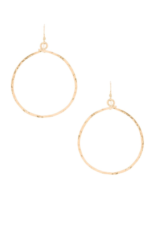 Mimi & Lu Echo Hoop Earrings in Gold