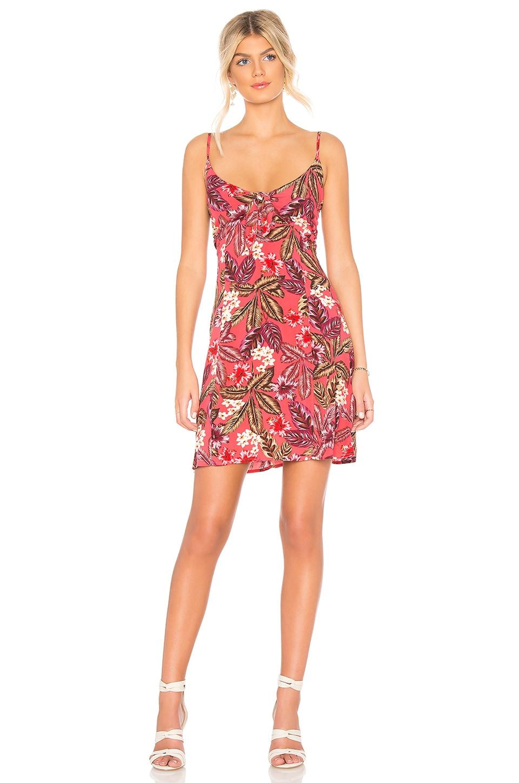Tropical Islands Dress