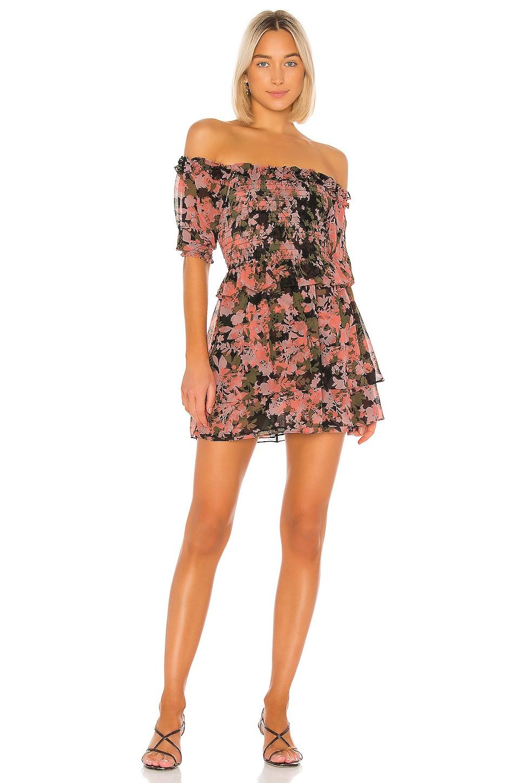 MISA Los Angeles Cela Dress in Multi Floral