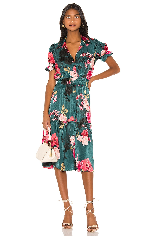 MISA Los Angeles X REVOLVE Melvari Dress in Green Floral