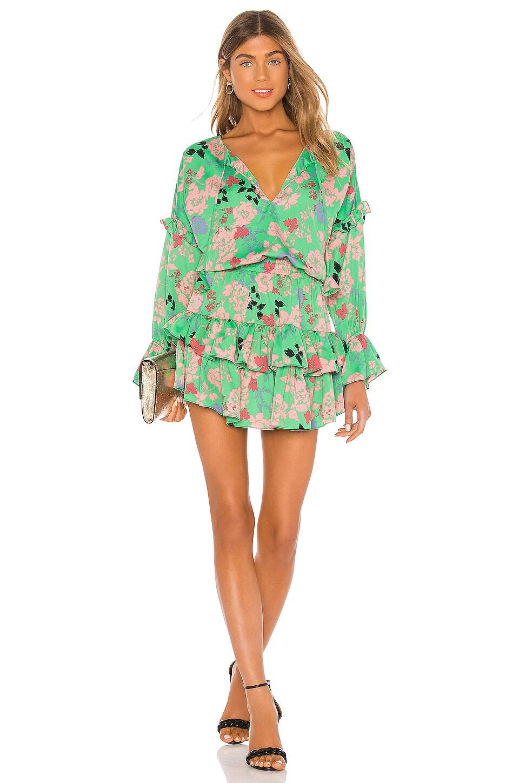 MISA Los Angeles Amalya Dress in Peony