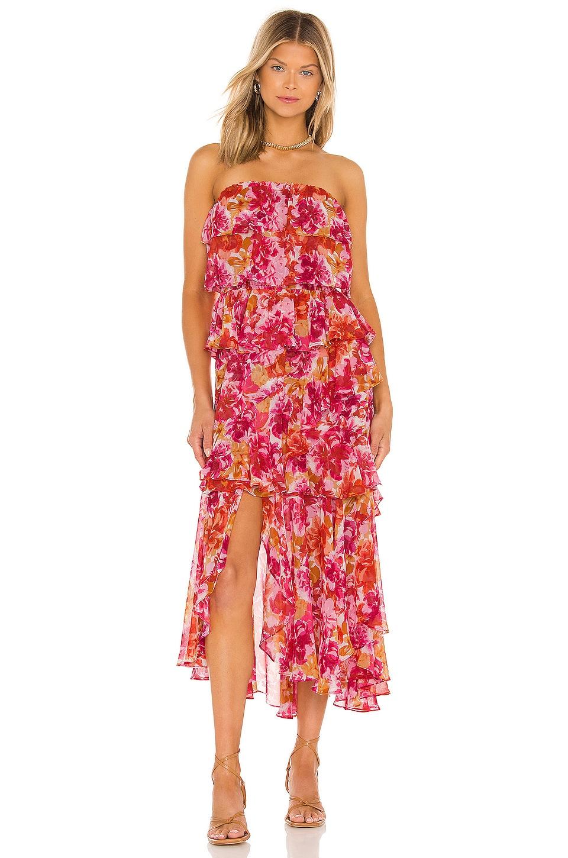 MISA Los Angeles Luciana Dress in Flora Burst