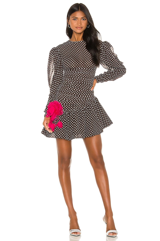 MARIANNA SENCHINA Mignolia Dress in Brown & White Polka Dot