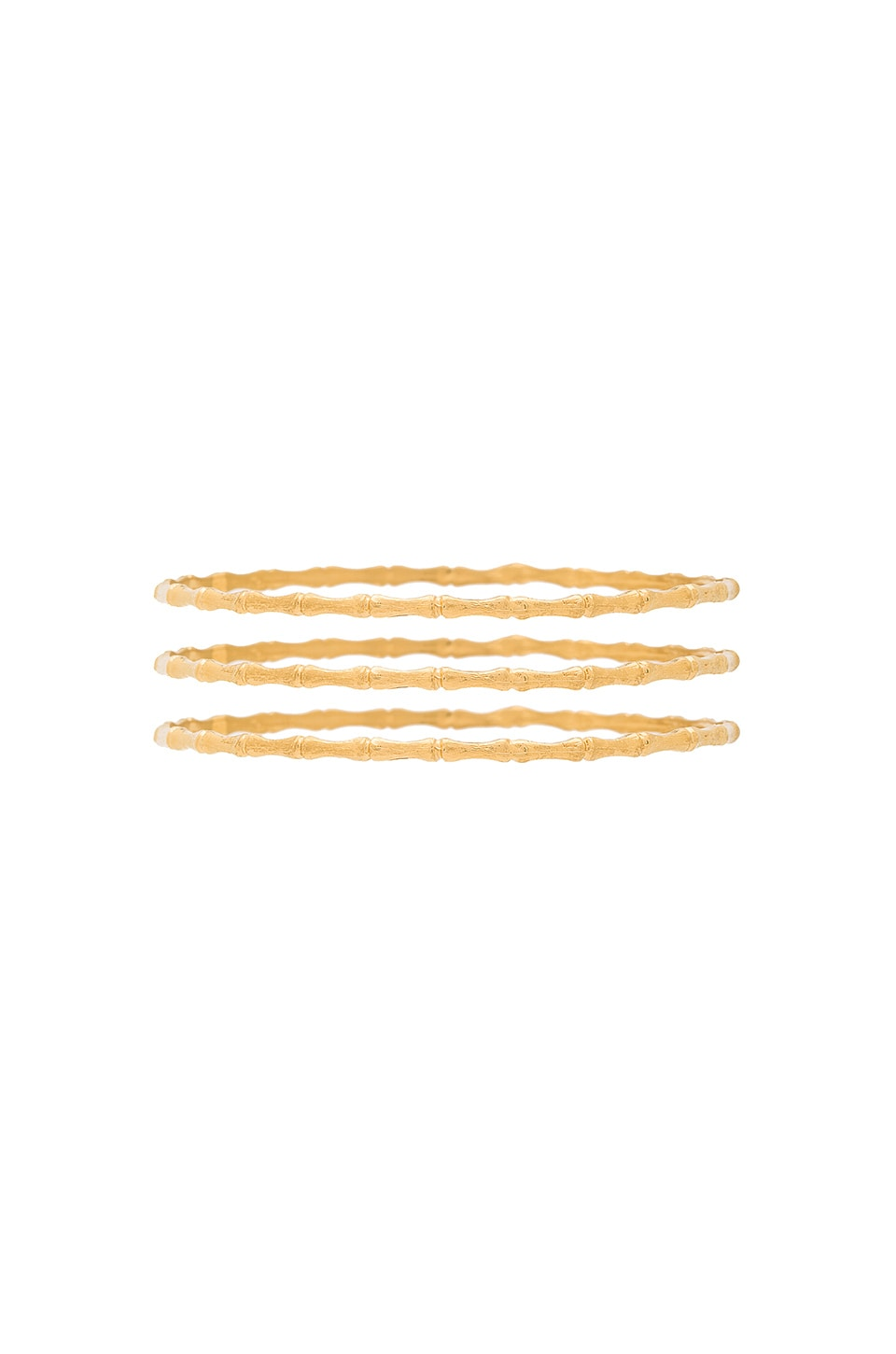 Natalie B Jewelry Bamboo Bangle Set in Gold