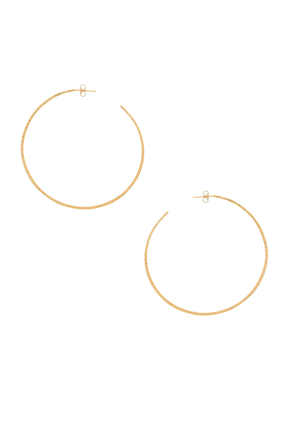 Natalie B Jewelry Classico Grande Hoops in Gold