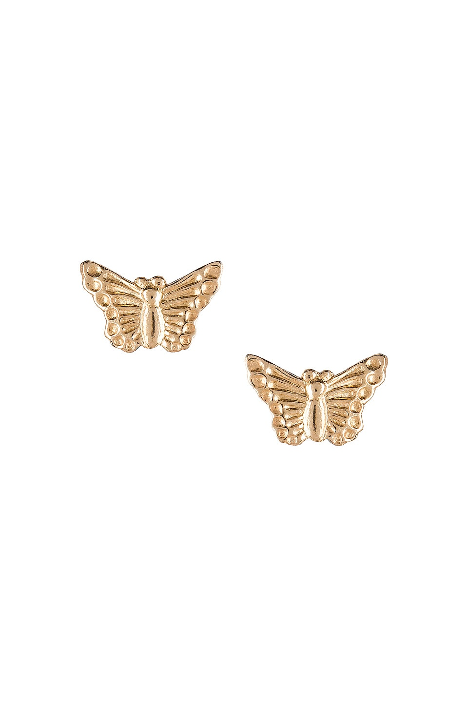 Natalie B Jewelry Butterfly Studs in Gold