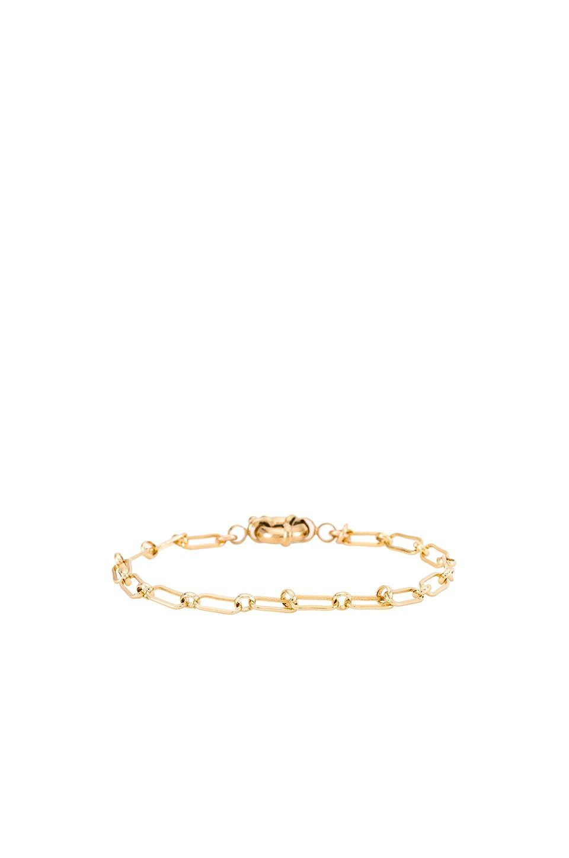 Natalie B Jewelry Milana Bracelet in Gold