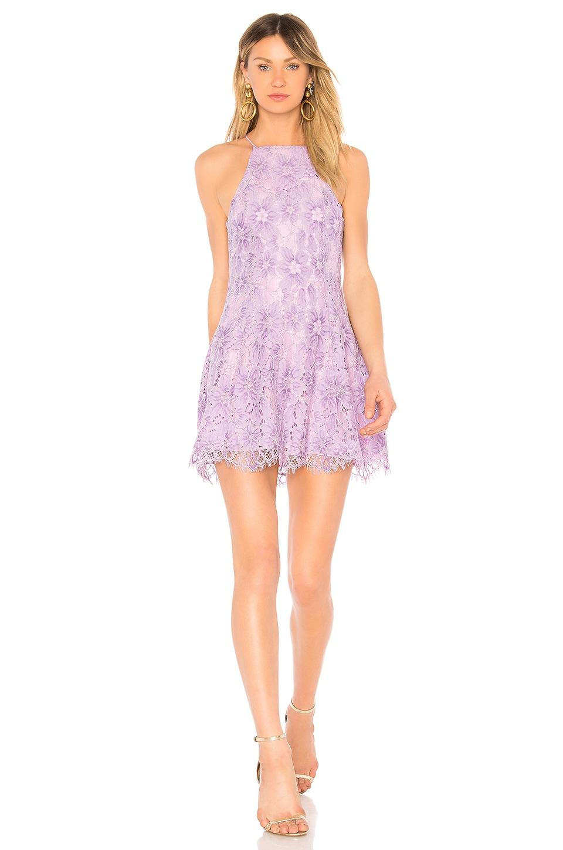 NBD Bria Dress in Lilac