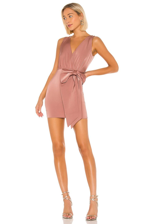 NBD Faerie Mini Dress in Brown