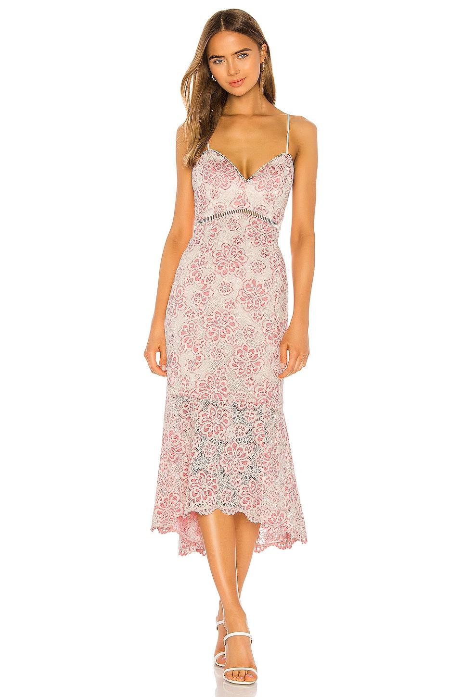 NBD Tove Midi Dress in Ivory & Pink