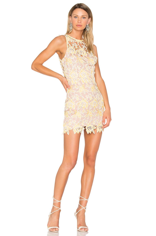 NBD Harriet Dress in Sunshine