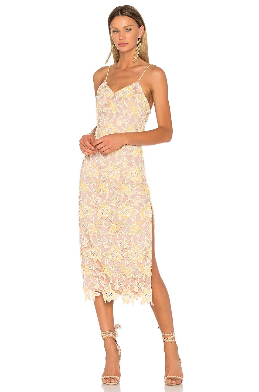 NBD Donna Dress in Sunshine