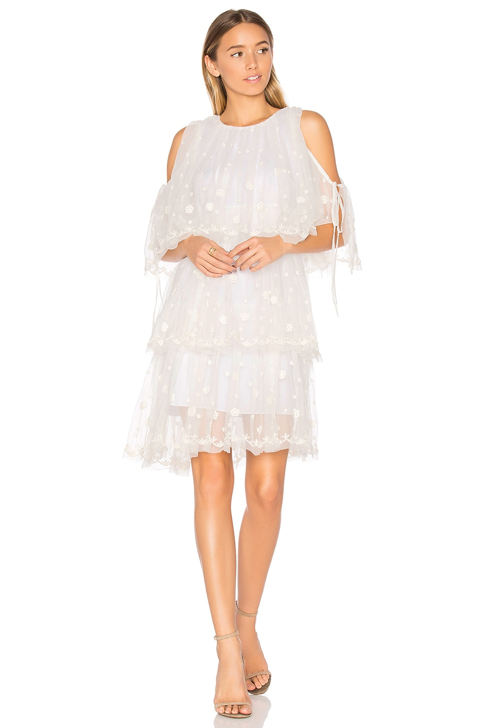 Embroidered Tulle Dress by Needle & Thread