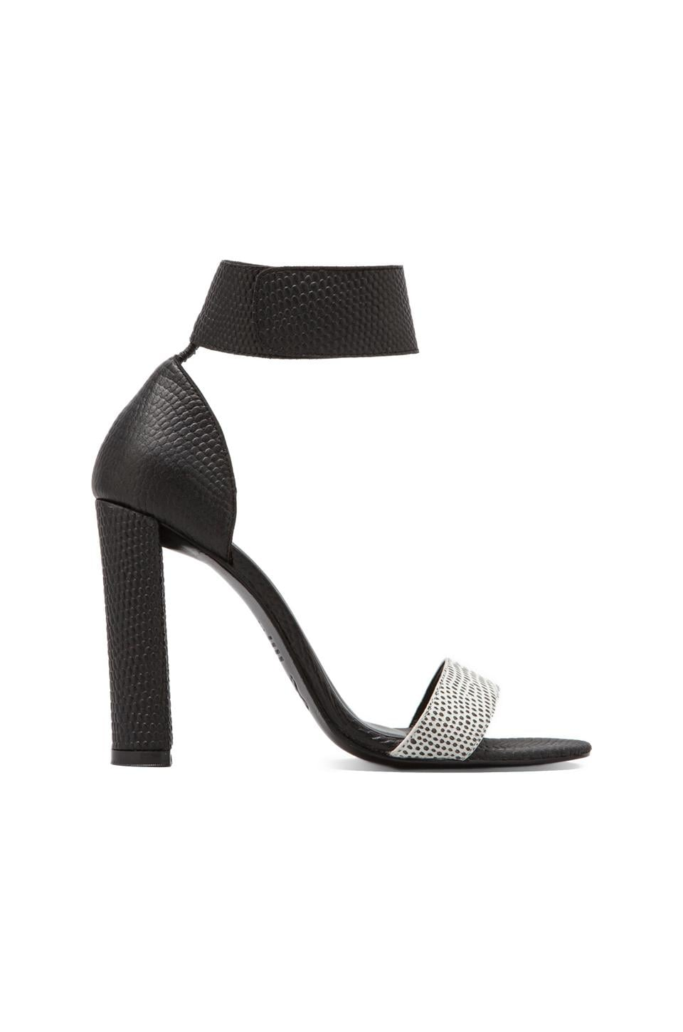 NICHOLAS Hari Pump in Black/White Lizard