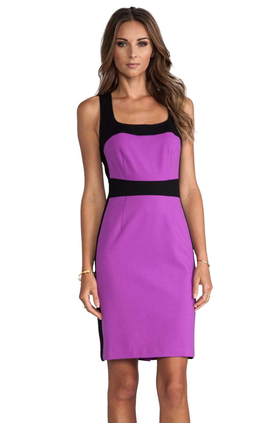 Nanette Lepore Hot Pursuit Dress in Grape