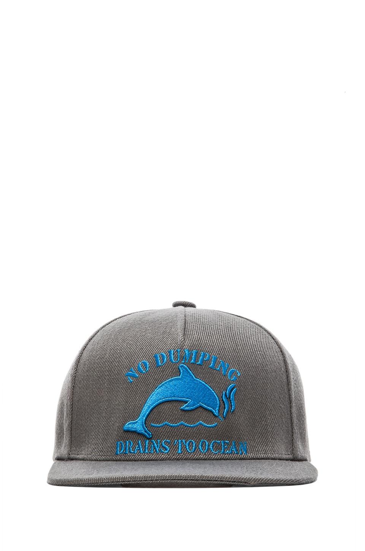 Odd Future Jasper Dolphin No Dumping Snapback in Black