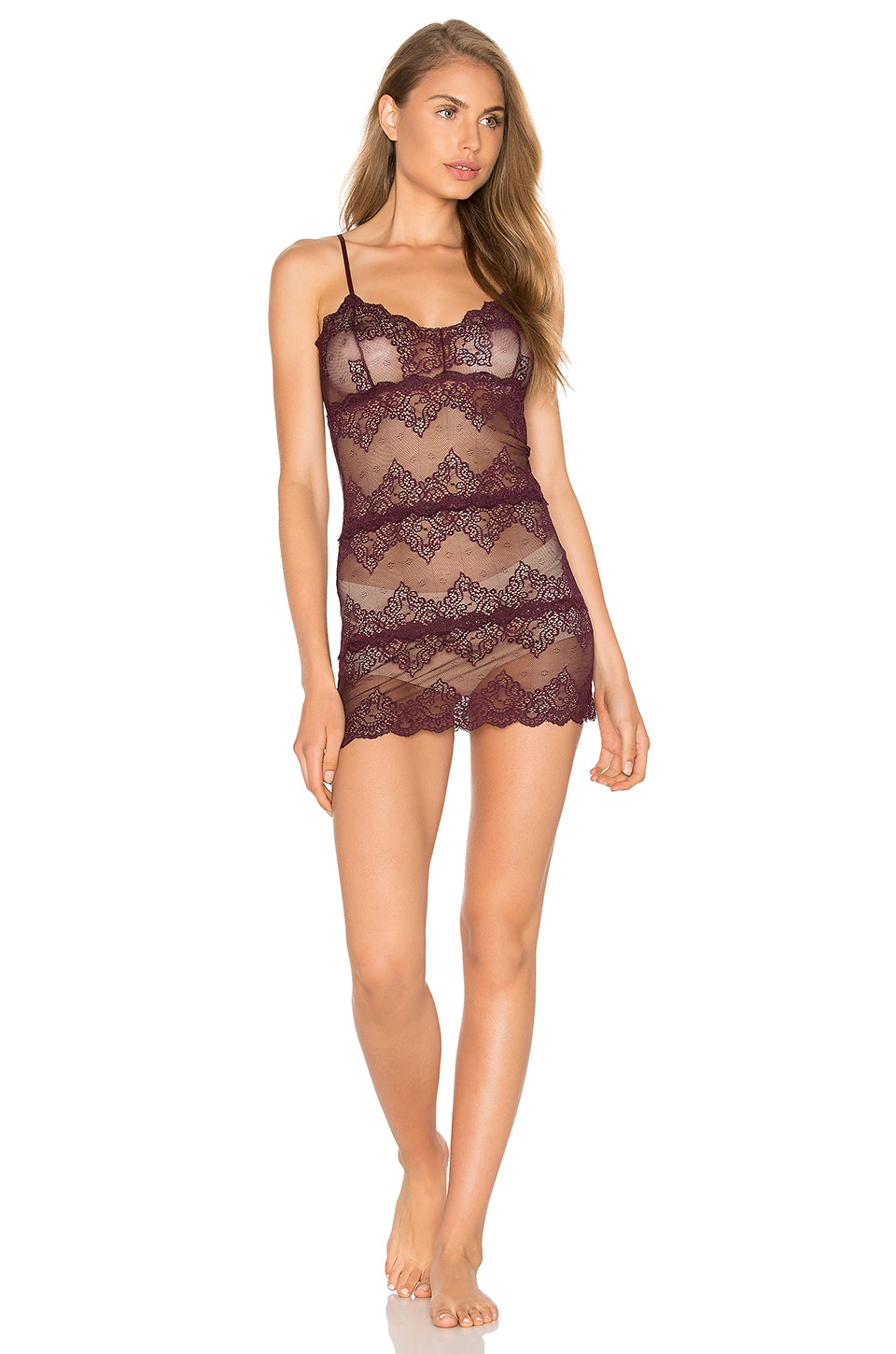 So Fine Lace Chemette by Only Hearts