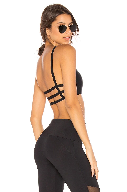 onzie Elastic Bra Top in Black & Black