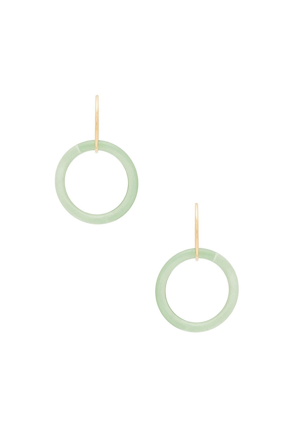 PARADIGM ACRYLIC RING HOOPS