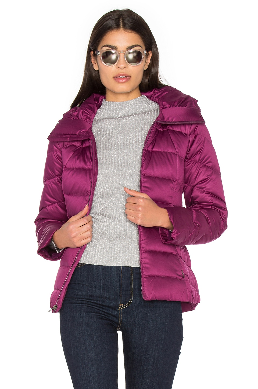 Patagonia Downtown Jacket in Violet Red