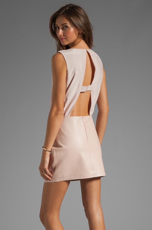 Parker Grace Leather Skirt Dress in Tard