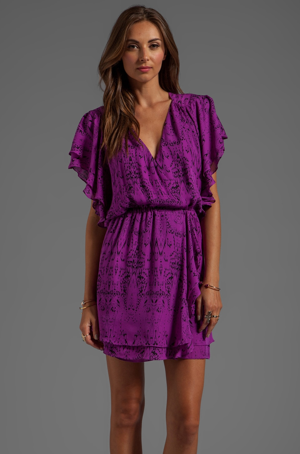 Parker Flora Printed Dress in Violet Chateau