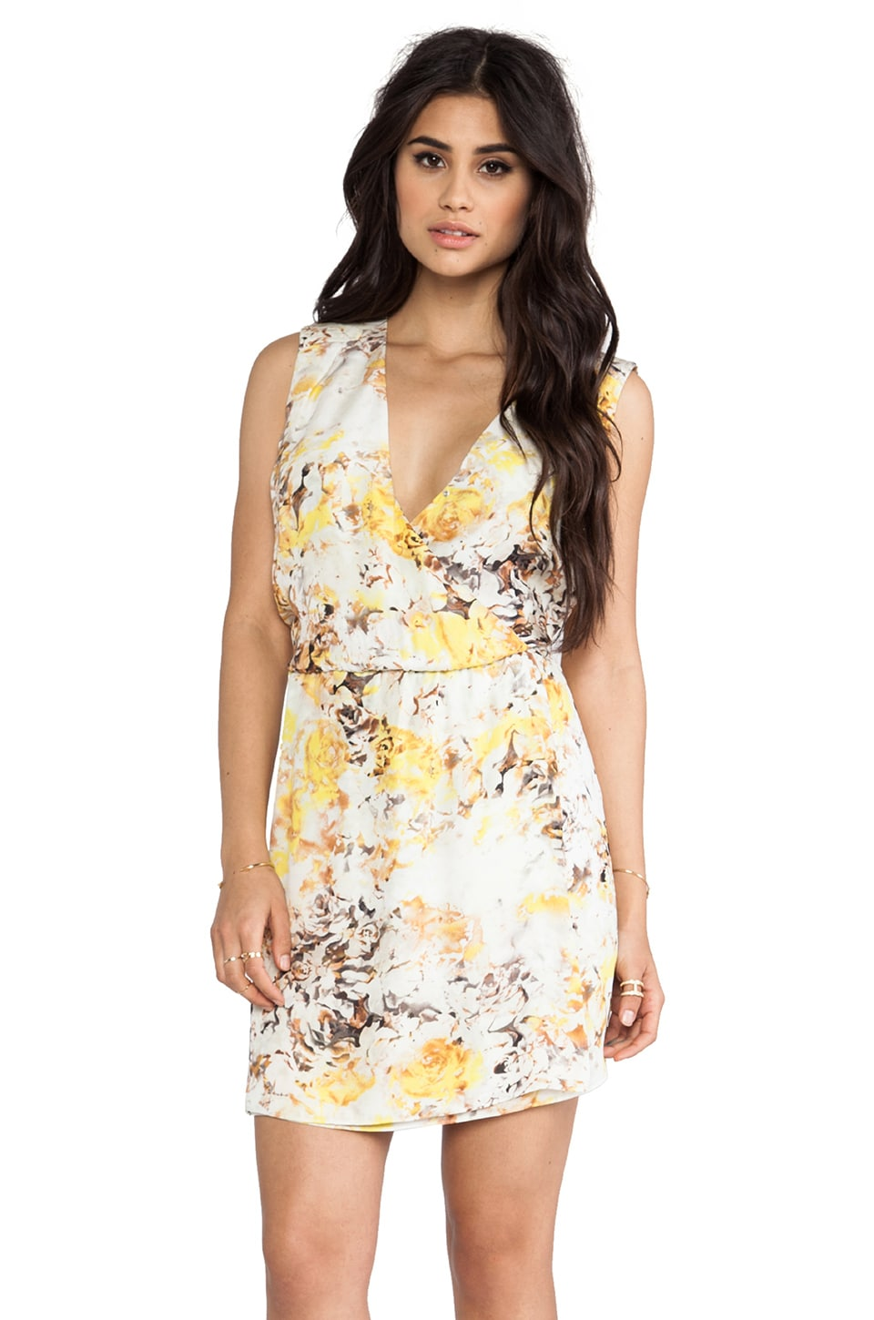 Parker Jody Dress in Sunflower Tapestry