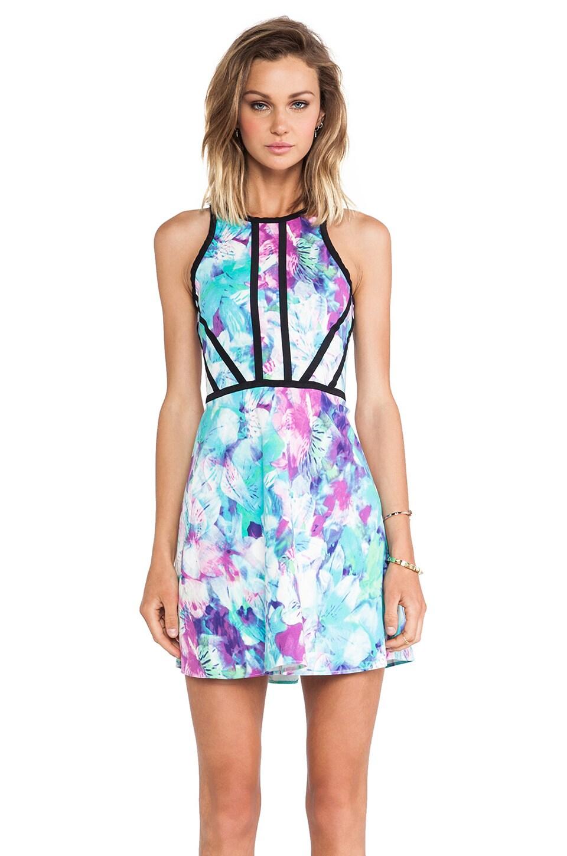 Parker Shelby Dress in Monet