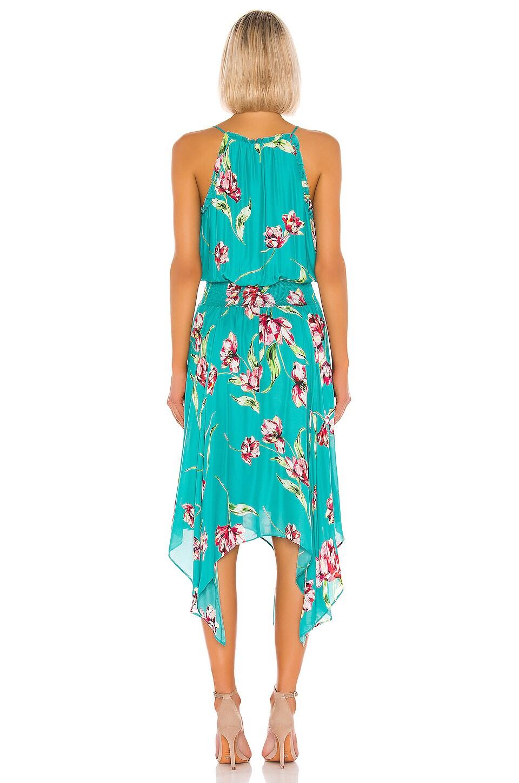 Parker Dresses Nolen Dress