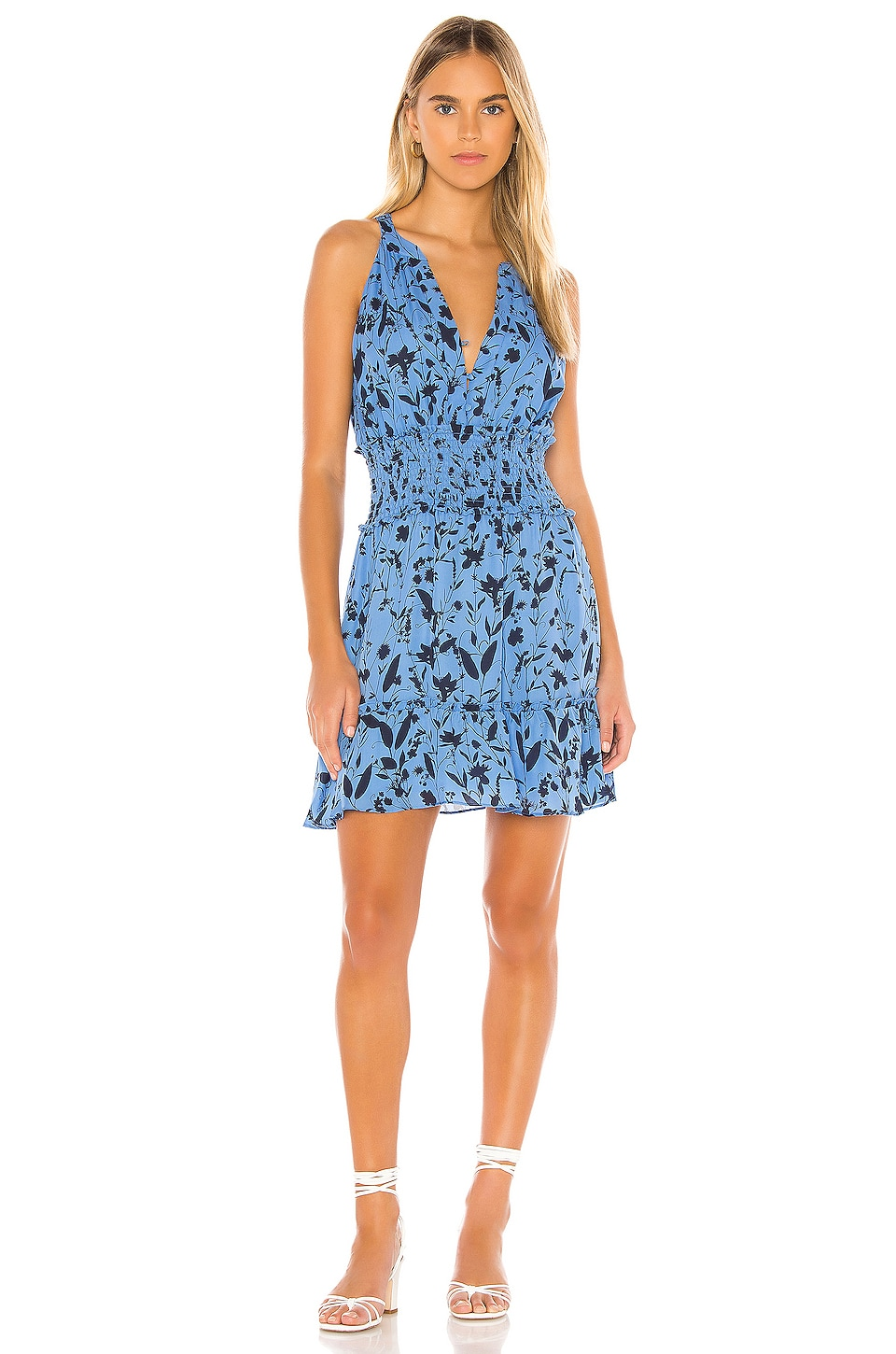 Parker Cambria Dress in Blue Meadow