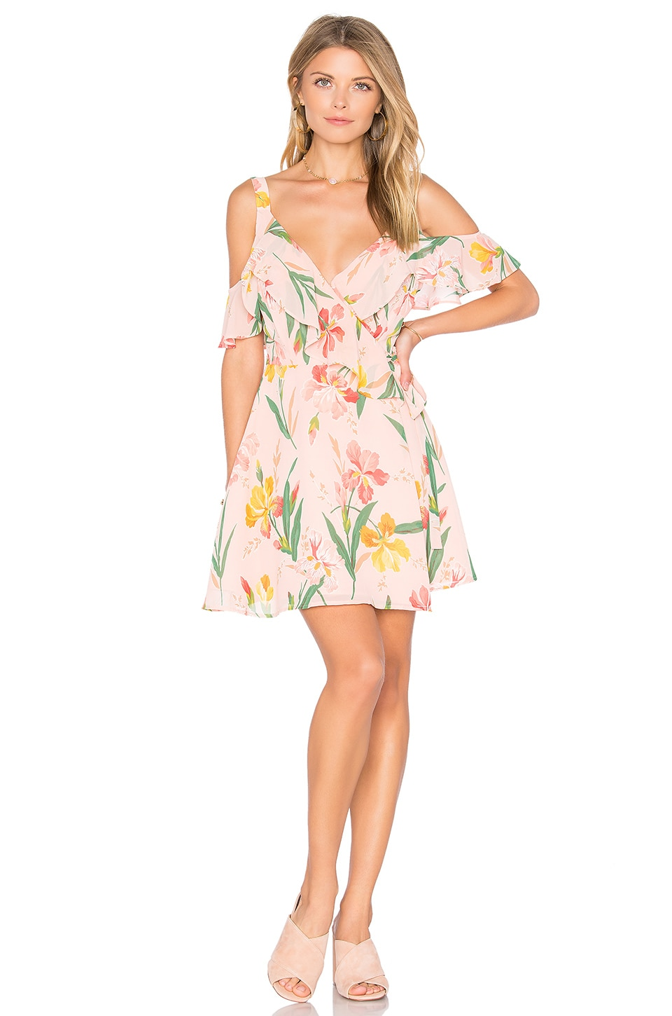 Privacy Please x REVOLVE Hamlet Dress in Ballet