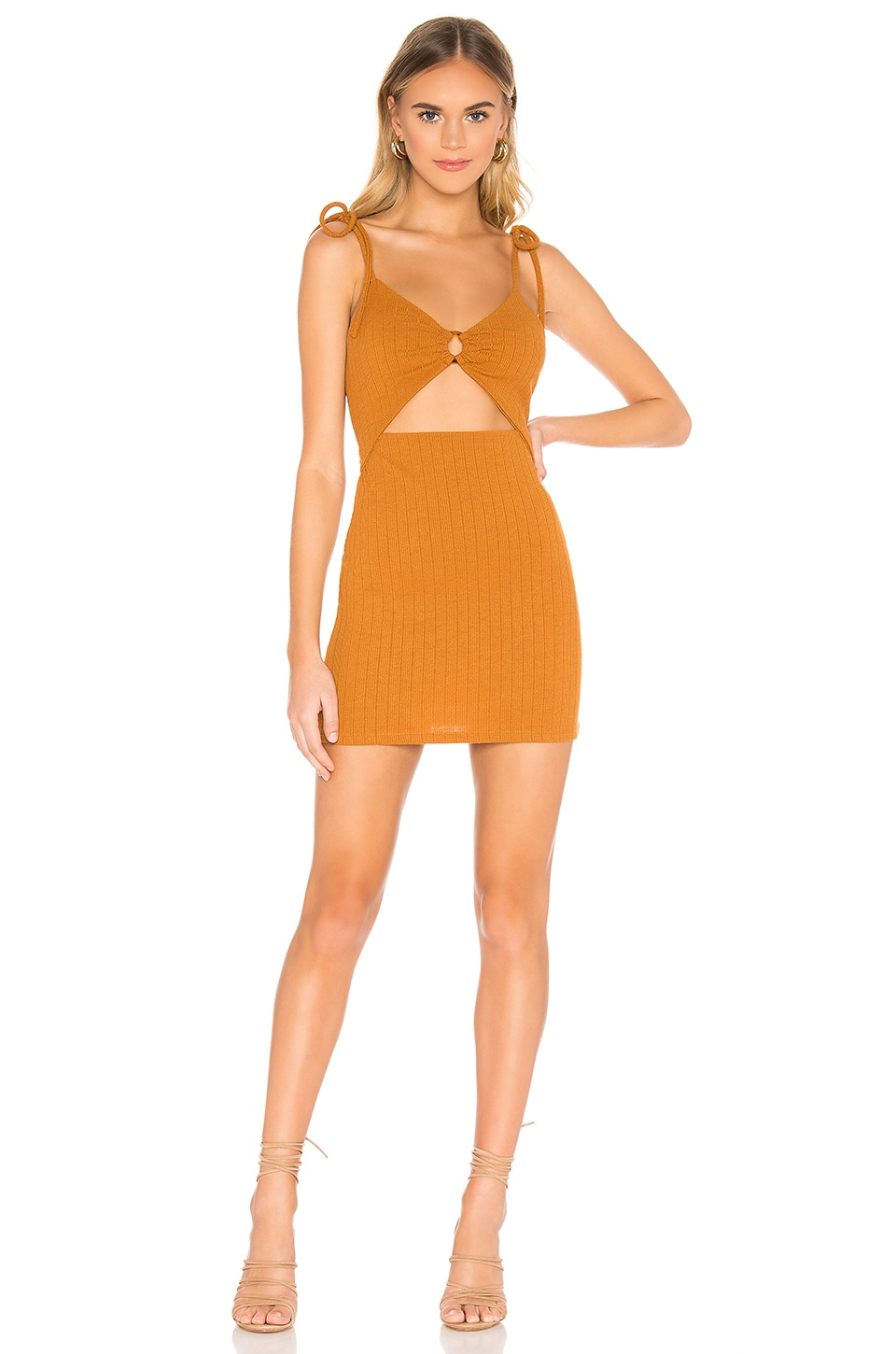 Privacy Please Pismo Mini Dress in Burnt Orange