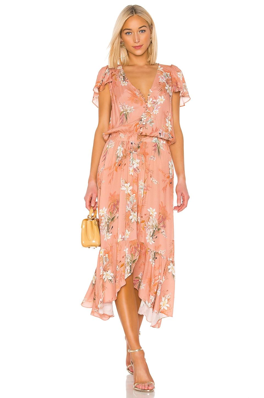 RAVN Nikki Dress in Nude Flower
