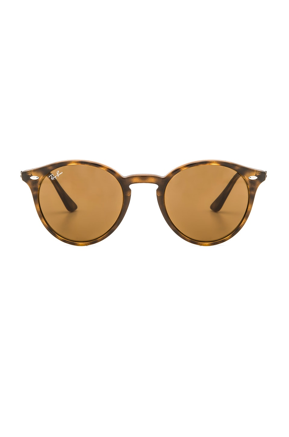 Ray-Ban Round Classic in Tortoise & Brown Classic