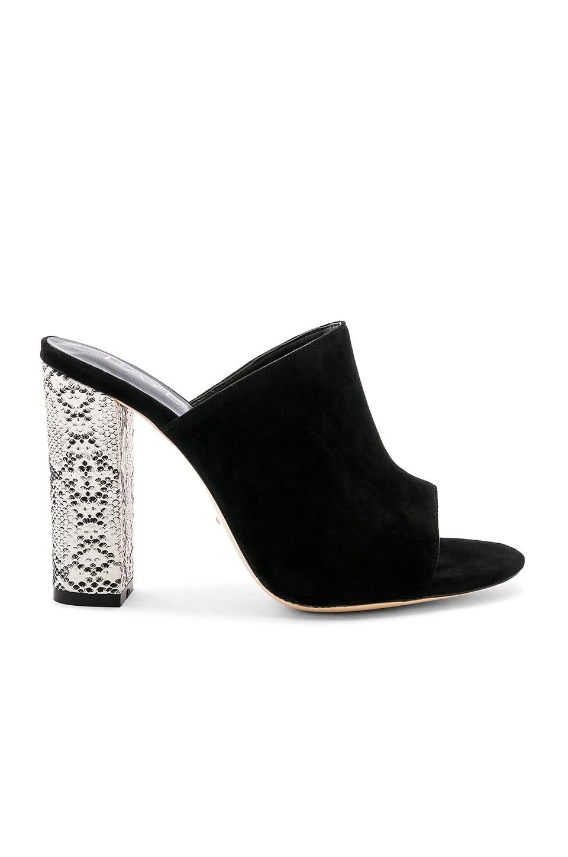 Boa Heel