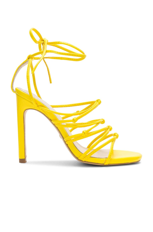 Cade Heel
