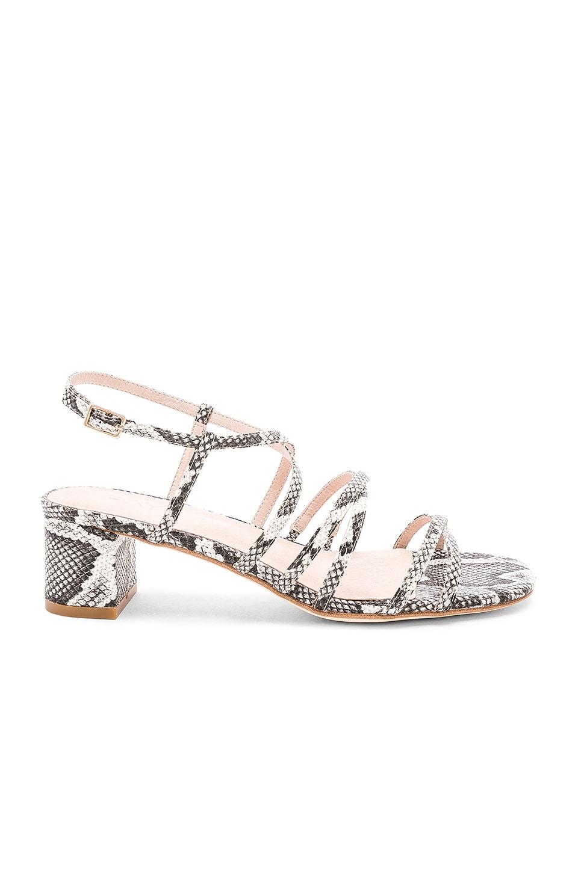 RAYE Verity Sandal in Grey