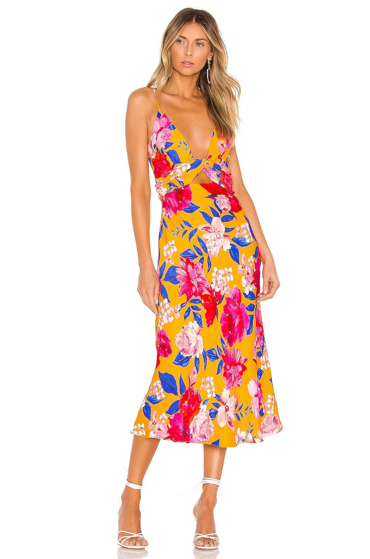 Ronny Kobo Anika Dress in Pineapple Multi