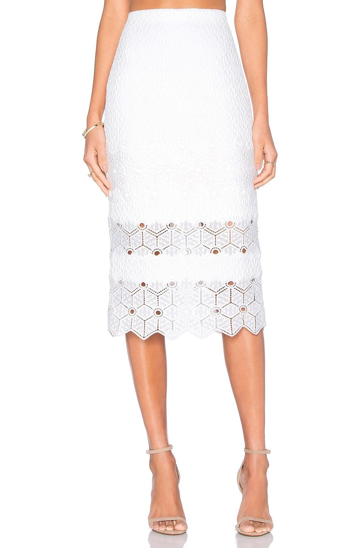 Dia Lace Skirt at REVOLVE