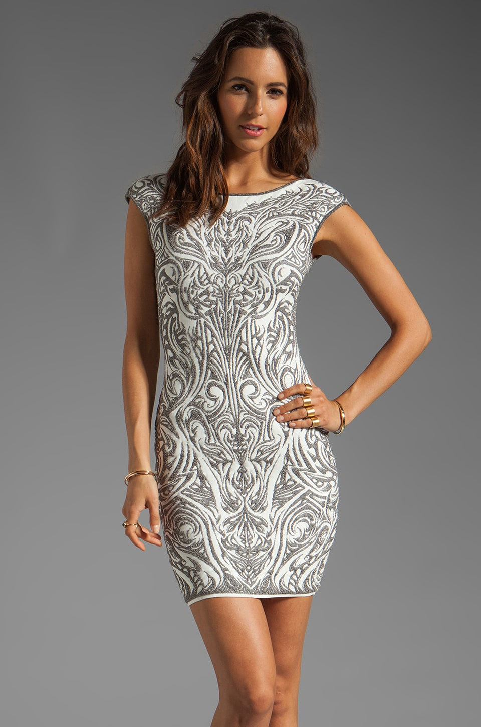 RVN Phoenix Embroidery Jacquard Dress in Sliver Lurex/White