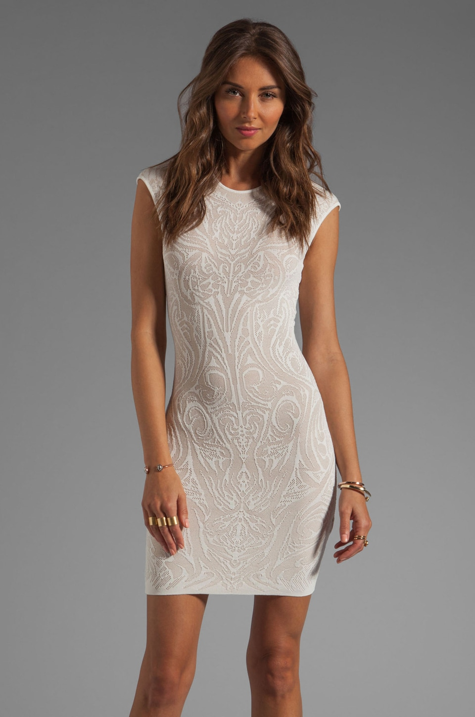 RVN Mini Tattoo Lace Jacquard Dress in White/Nude