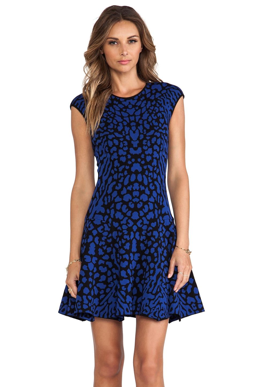 RVN Cougar Jacquard Flare Dress in Blue & Black