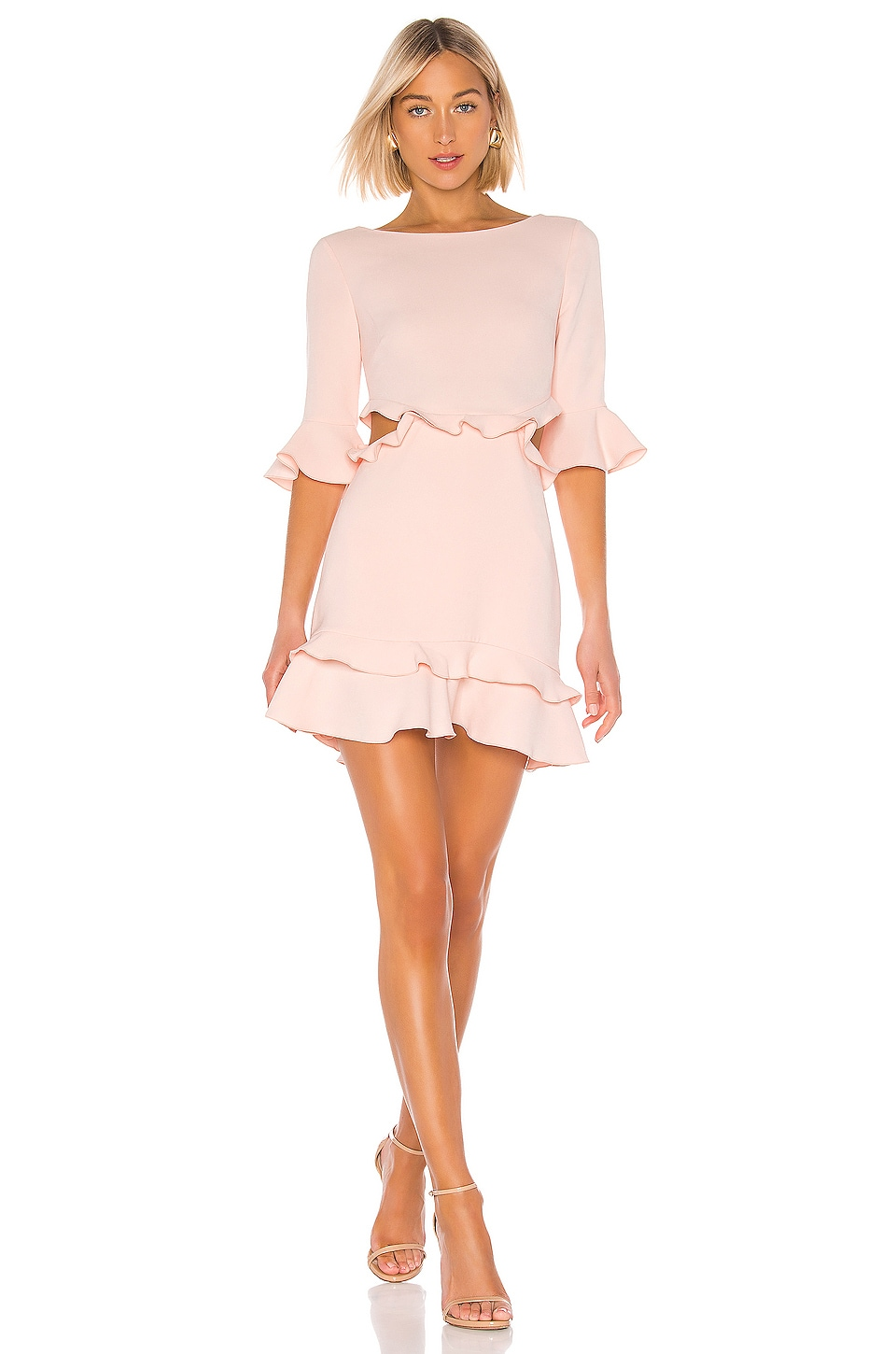 RACHEL ZOE Karly Dress in Rosebud