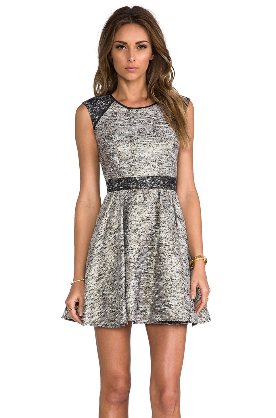 RACHEL ZOE Marley Flare Dress in Metallic Multi