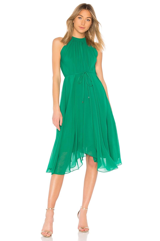 SALONI Iris Short Dress in Kelly Green